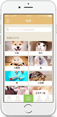slide-phone-mypet-3