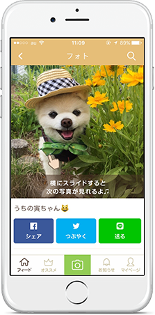 slide-phone-mypet-5
